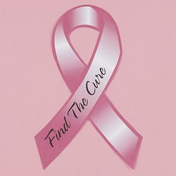 "3 1/2"" x 8"" Vinyl Pink RIbbon Car Magnets"