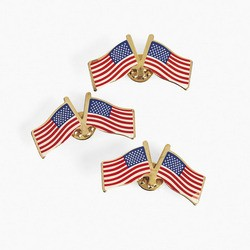 Double USA Flag Pins